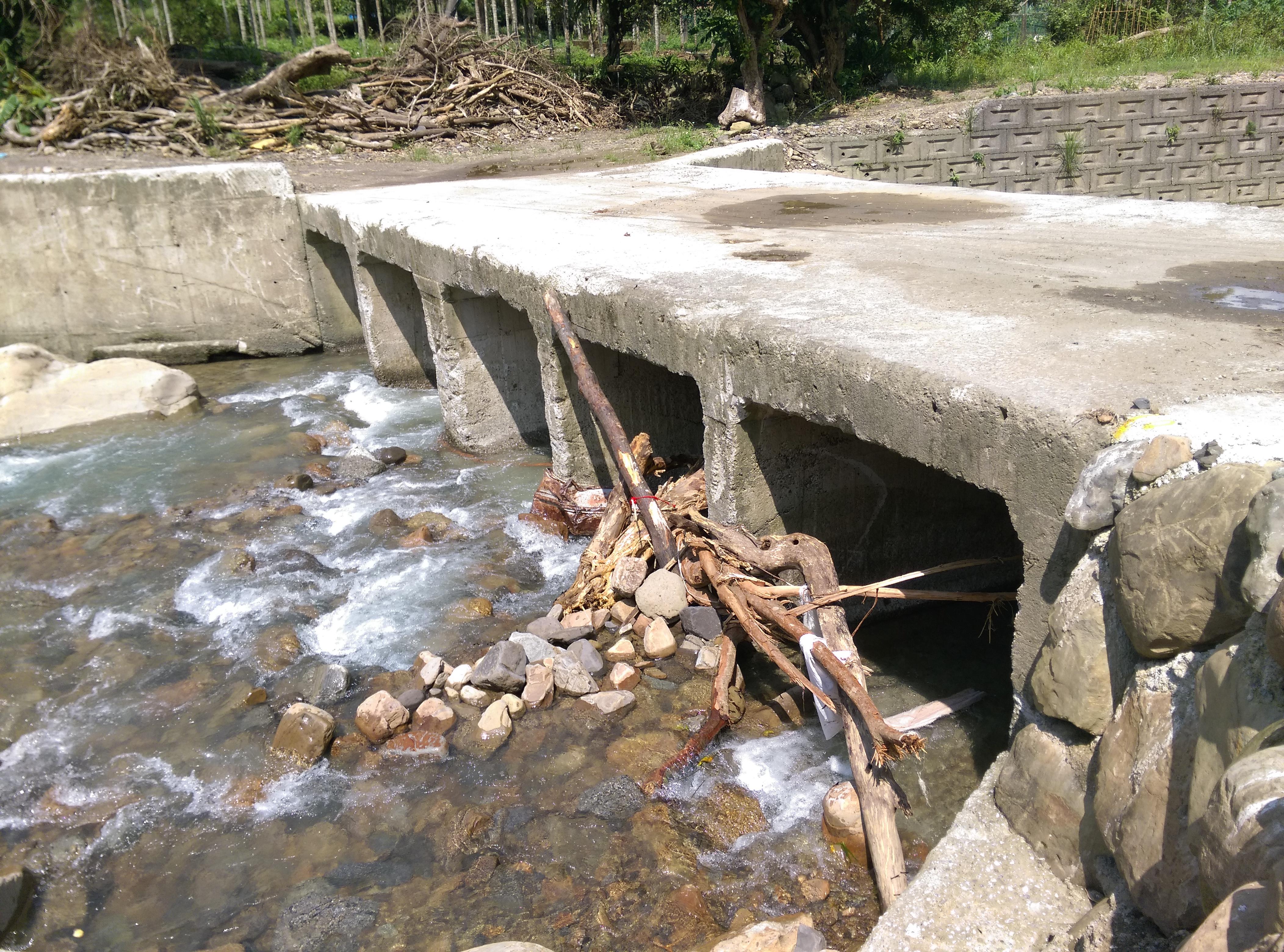 橋梁落柱於河道中,造成樹木等積於河道,如遇暴雨,恐造成河道堵塞。(攝影/劉品彣)