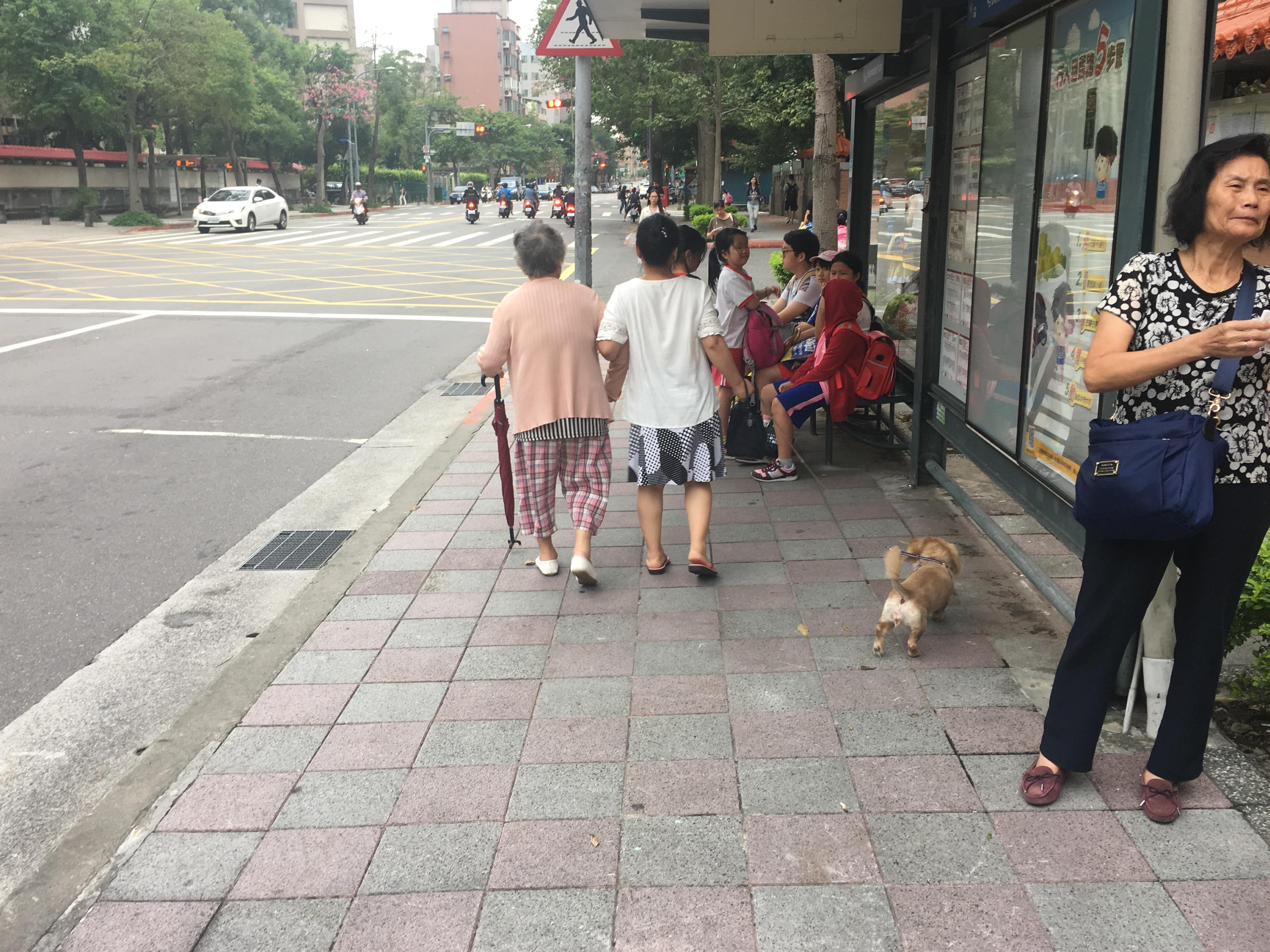 公車站牌不乏出現年長的乘客與小孩,等候搭乘