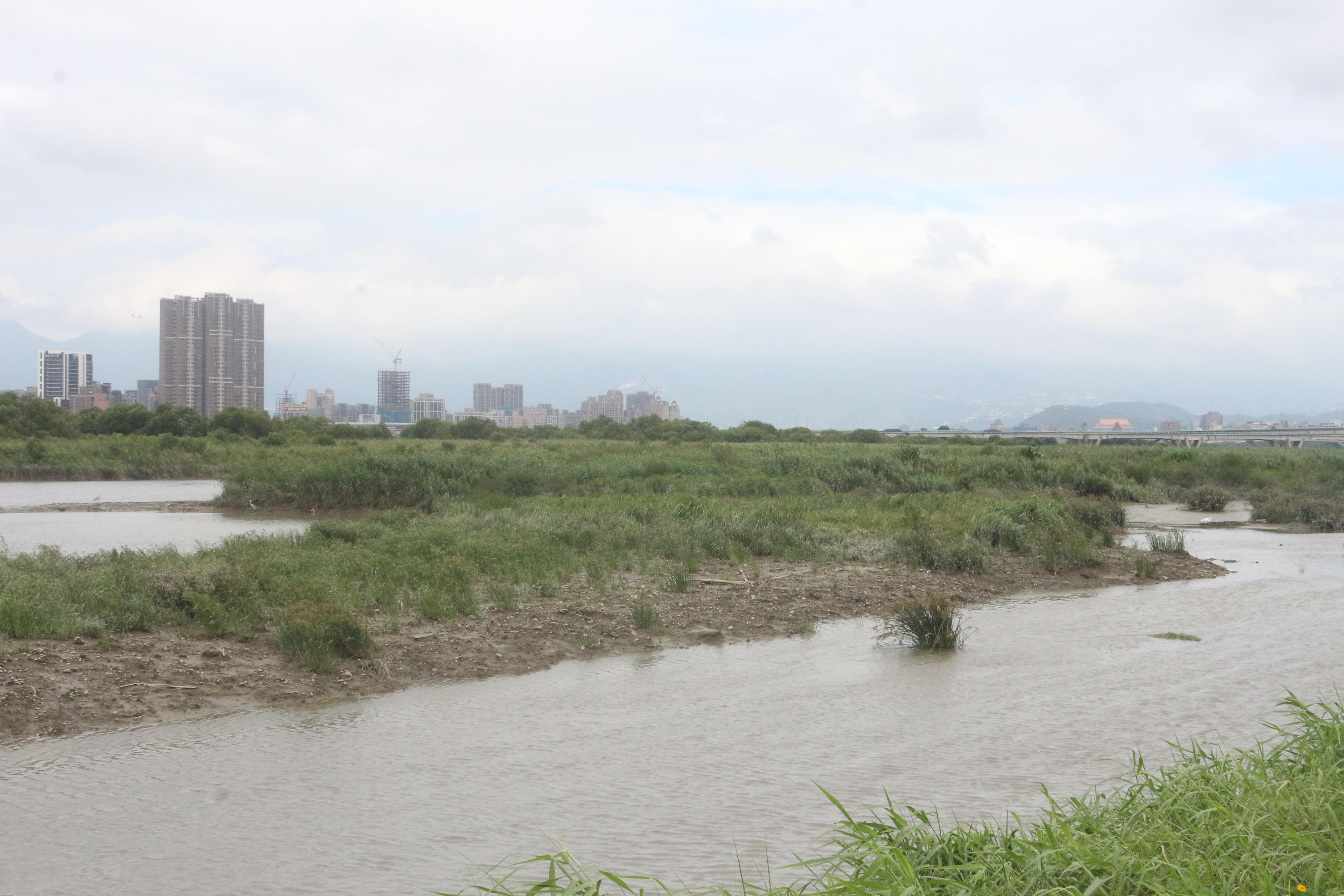 陸化的河床沙洲 吳冠輝攝