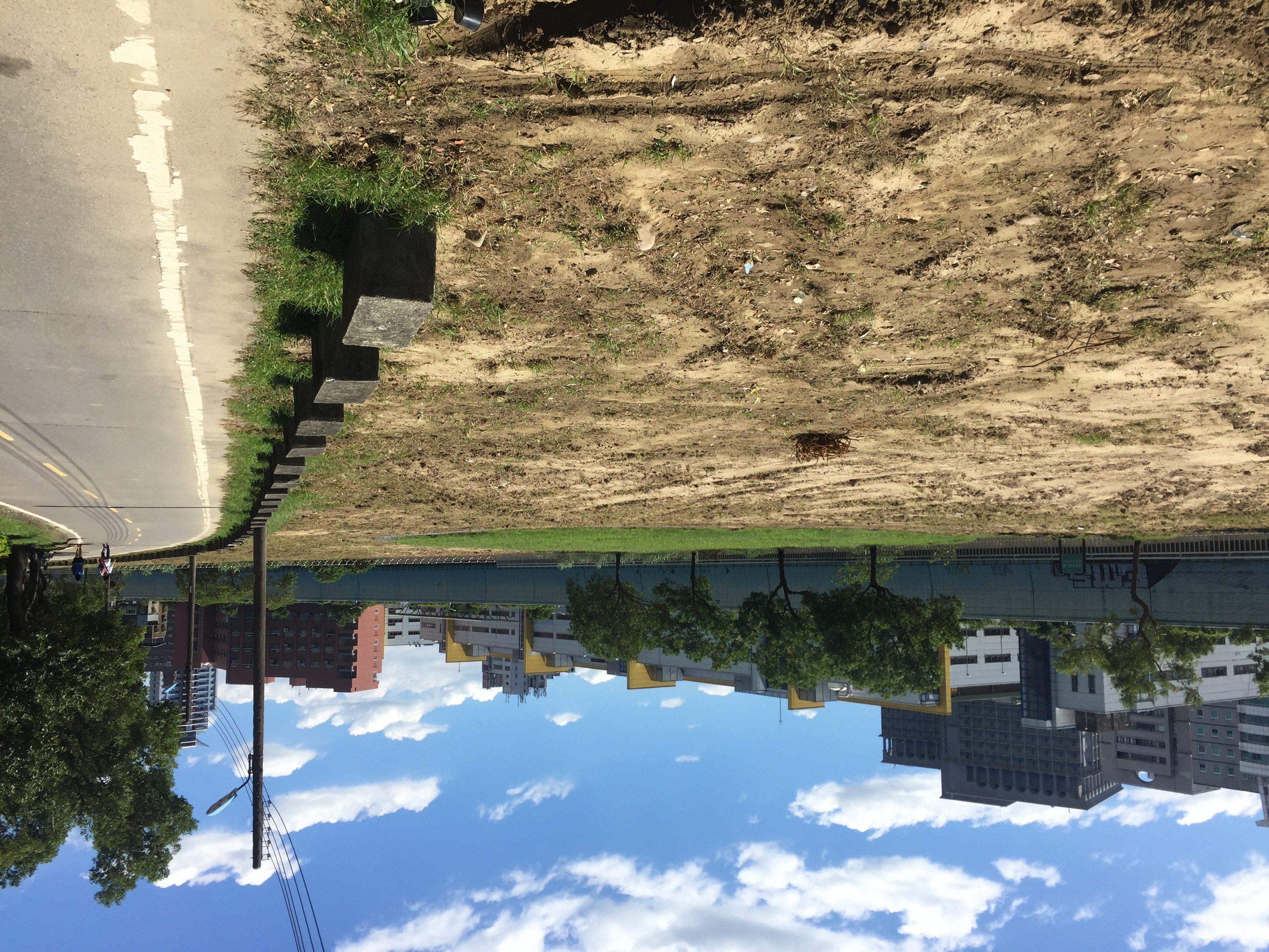 大面積的土壤裸露在外,並非人為破壞,而是景美河濱公園重新規劃的第一步。攝影/孔祥智