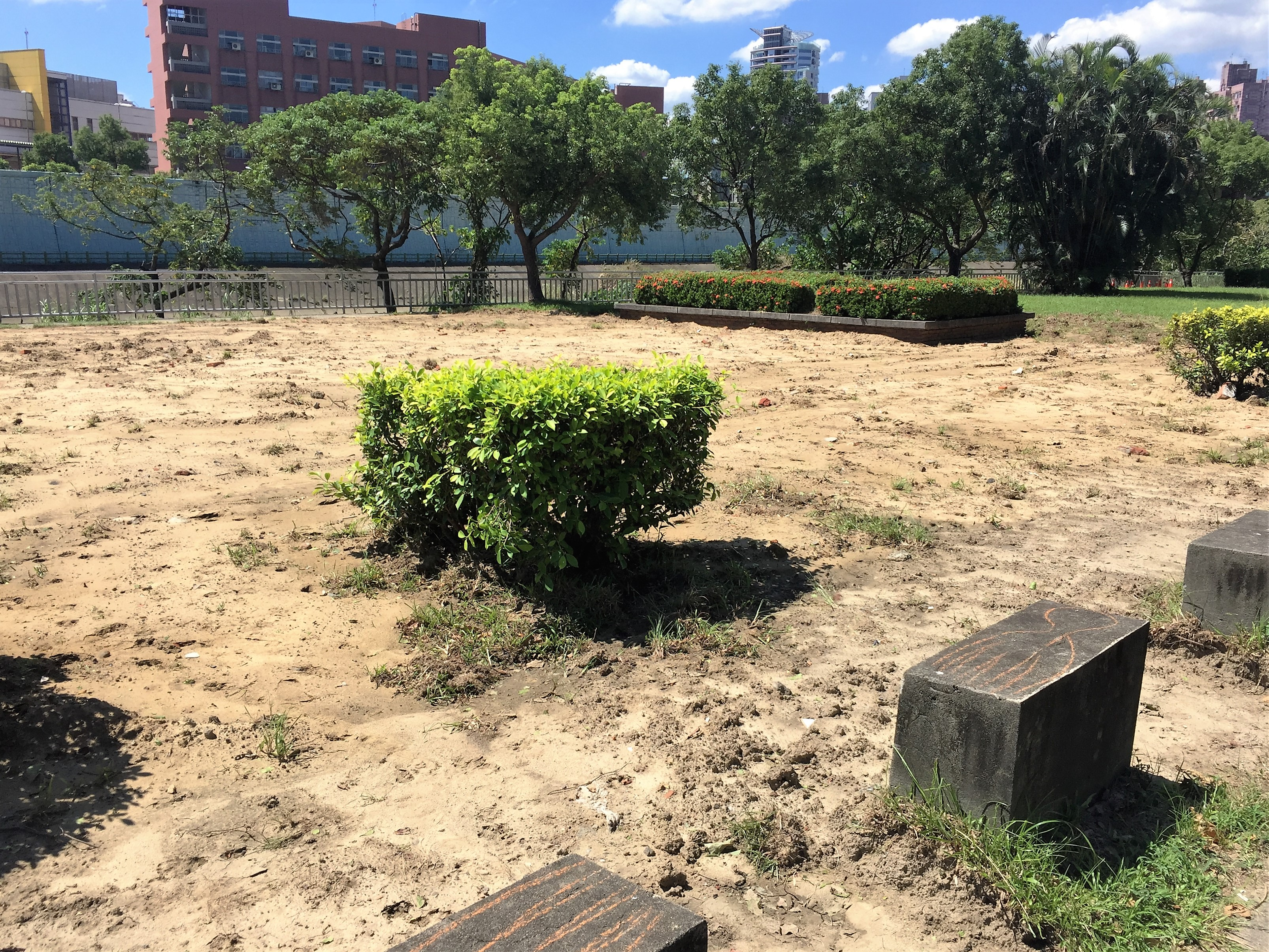 河濱公園水泥地部分已經拆除,而原有的植被繼續保留。攝影/孔祥智