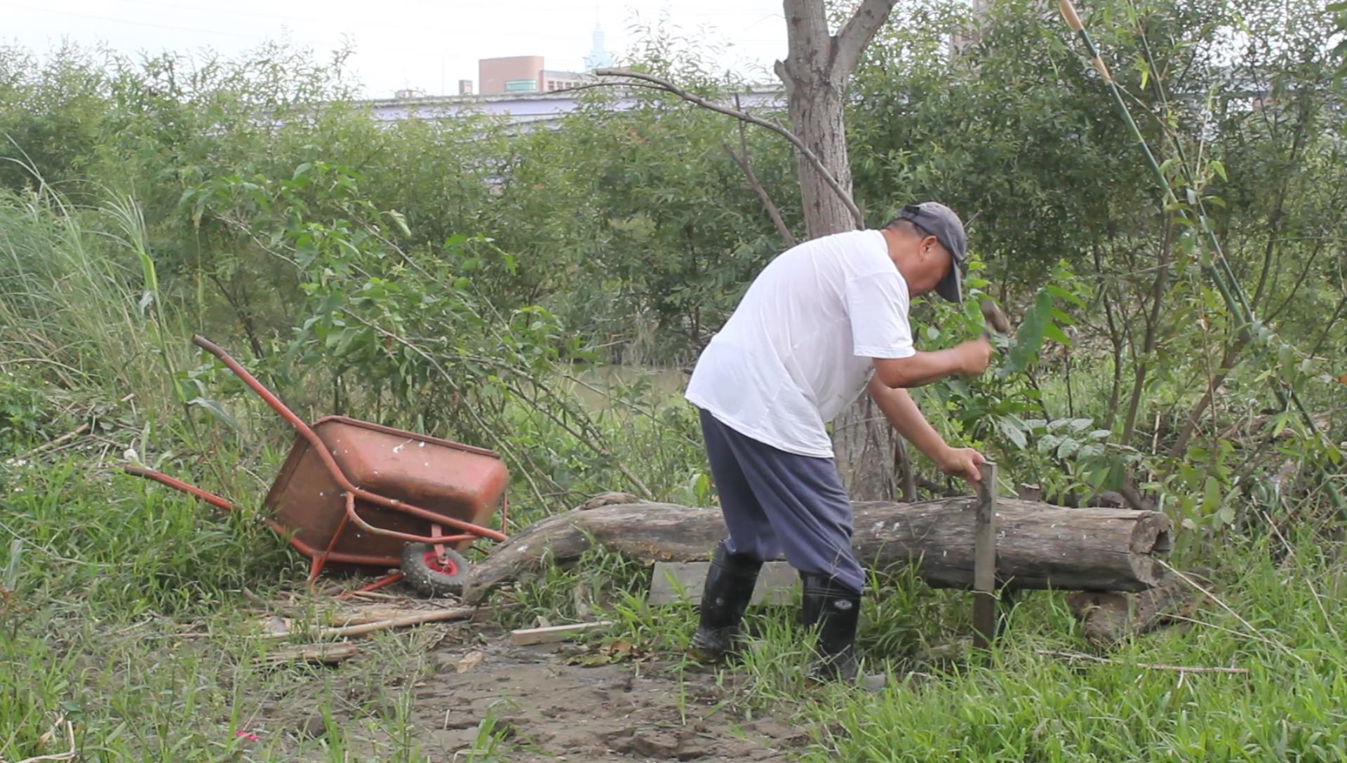 志工整修濕地園區。攝影/林韋宏