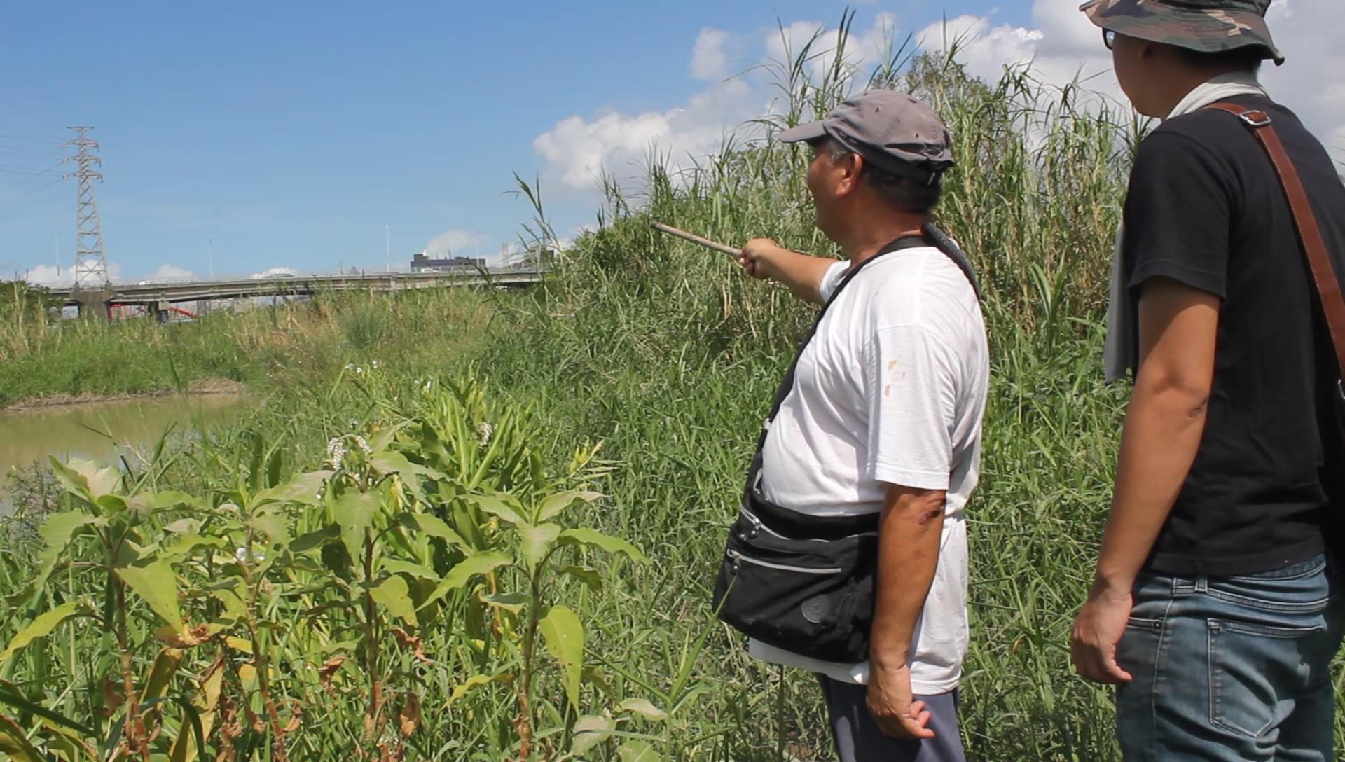 志工查看人工溪流區。攝影/林韋宏