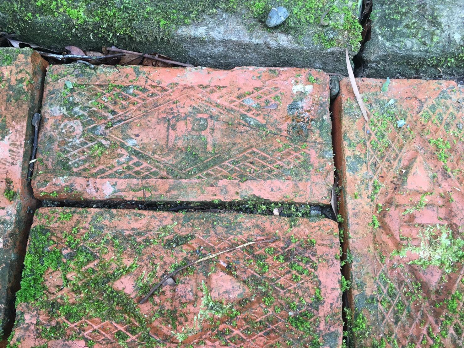 園區內材料TR磚