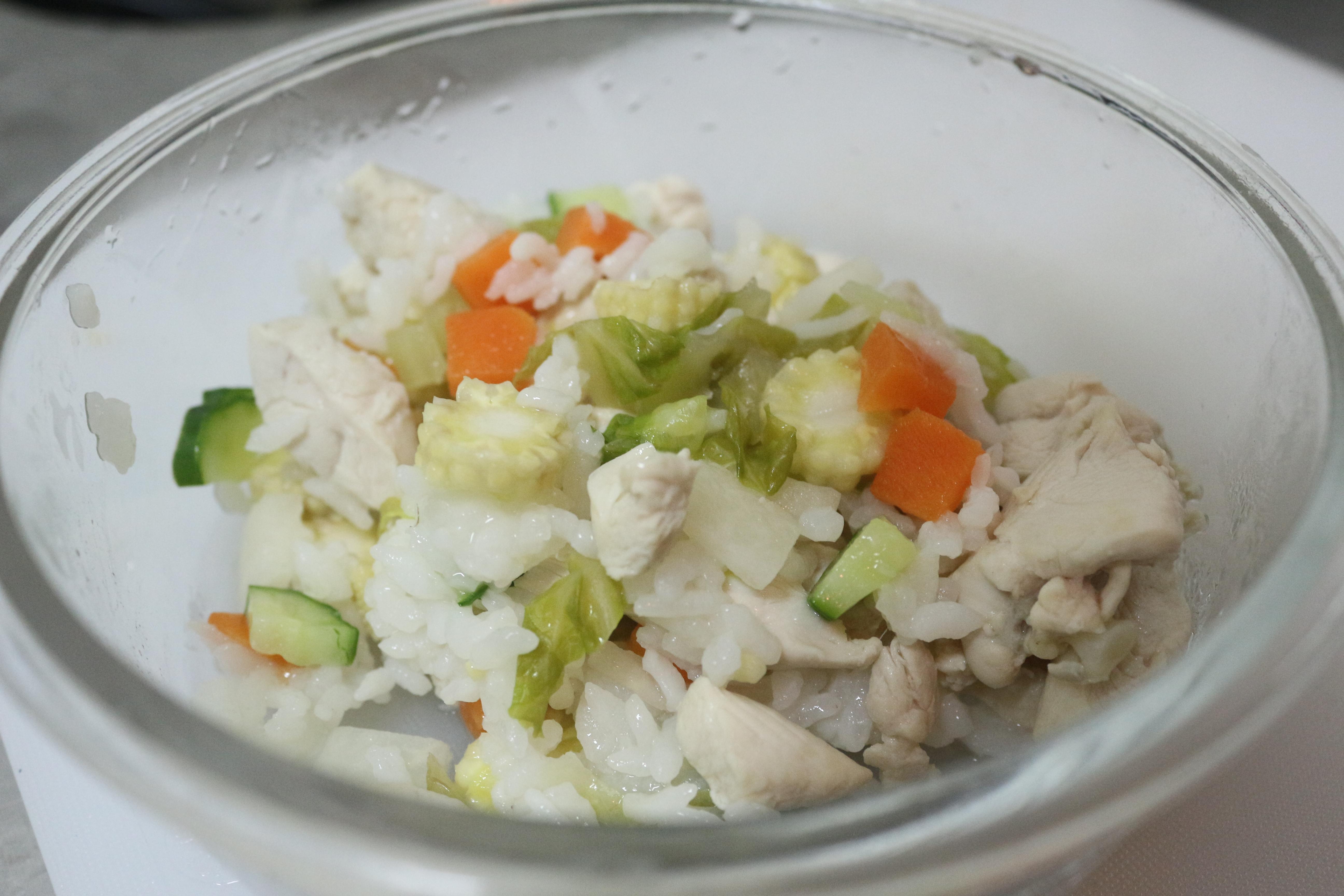 雞胸肉鮮蔬燉飯。 攝影/吳冠輝