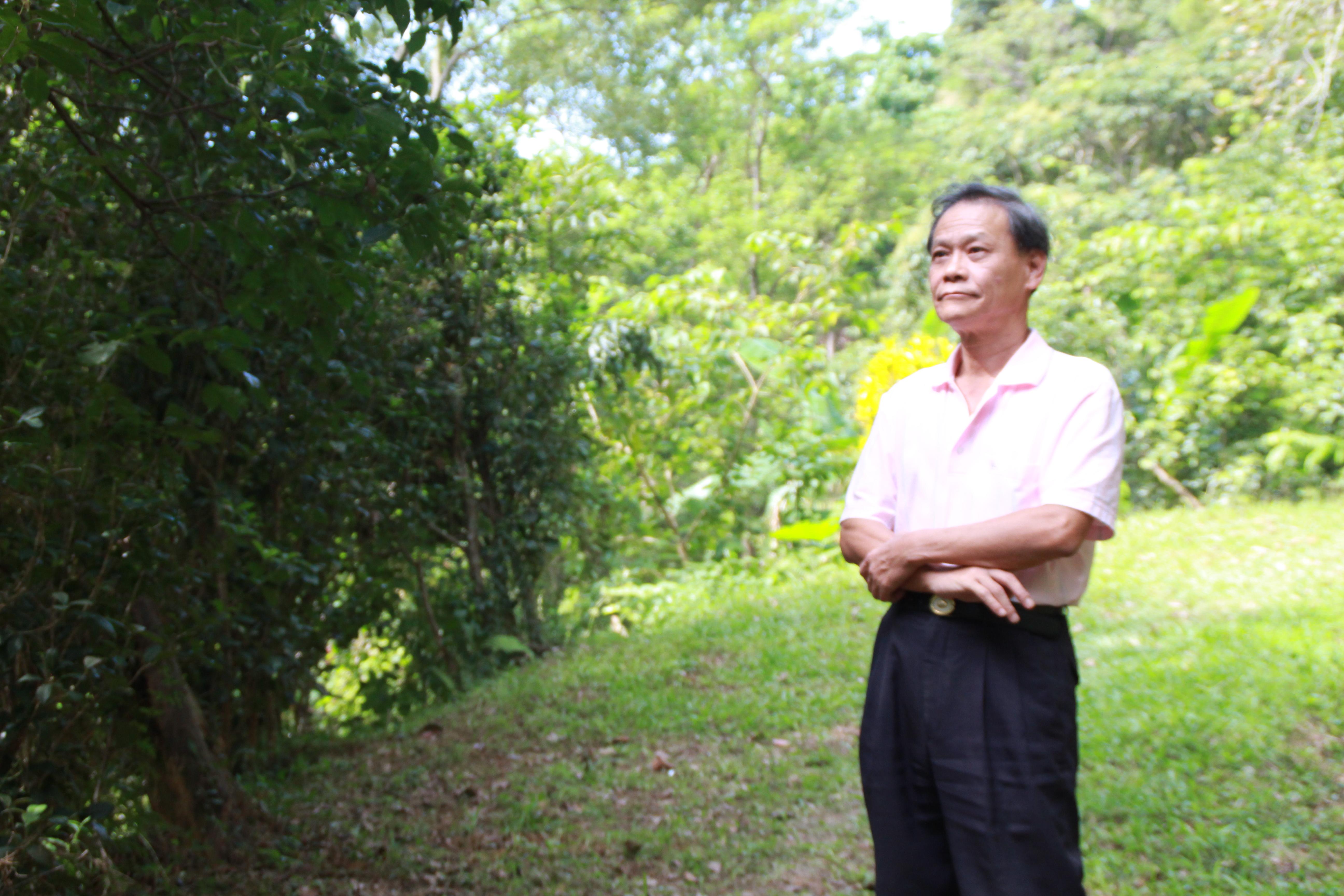 景美區農會理事長高勝福,因緣際會下,開啟栽種咖啡生涯。攝影/邵永輝