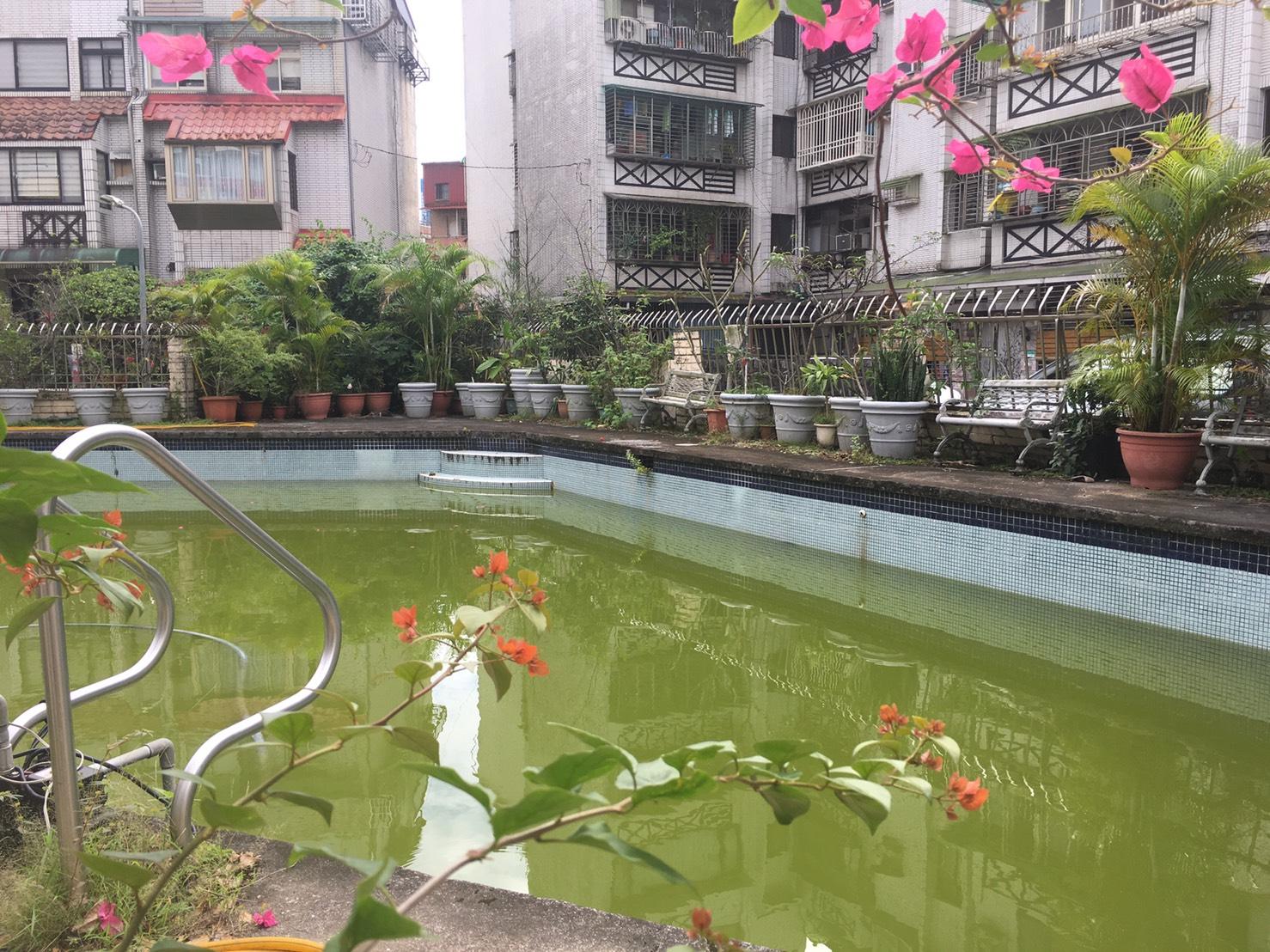 廢棄池改建為蓄水池。攝影/林韶君