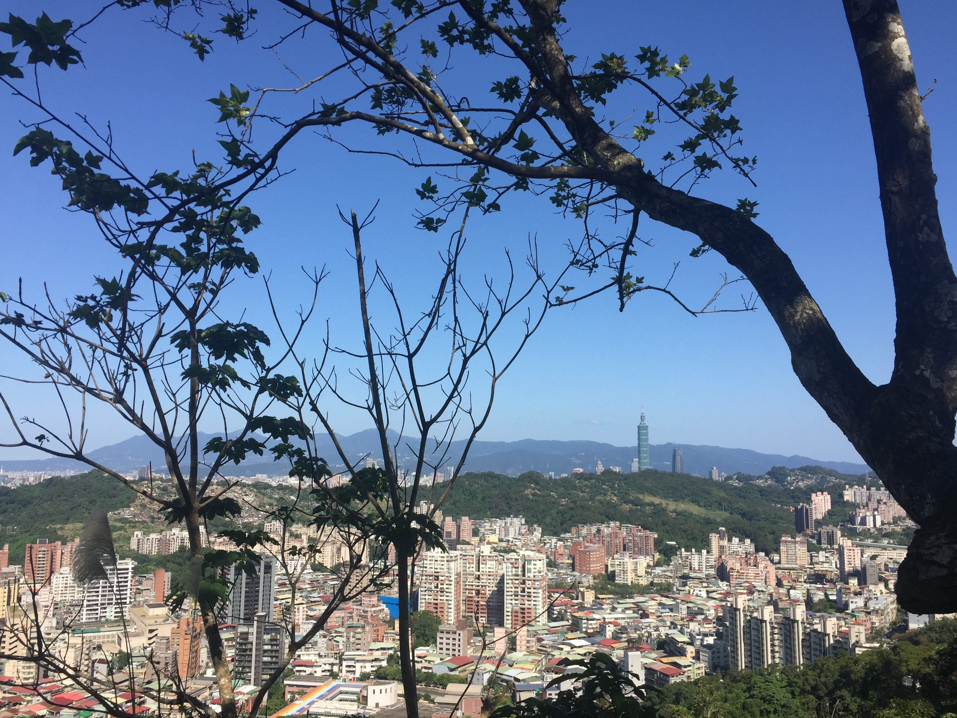 在仙跡岩俯瞰台北市。攝影/孔祥智