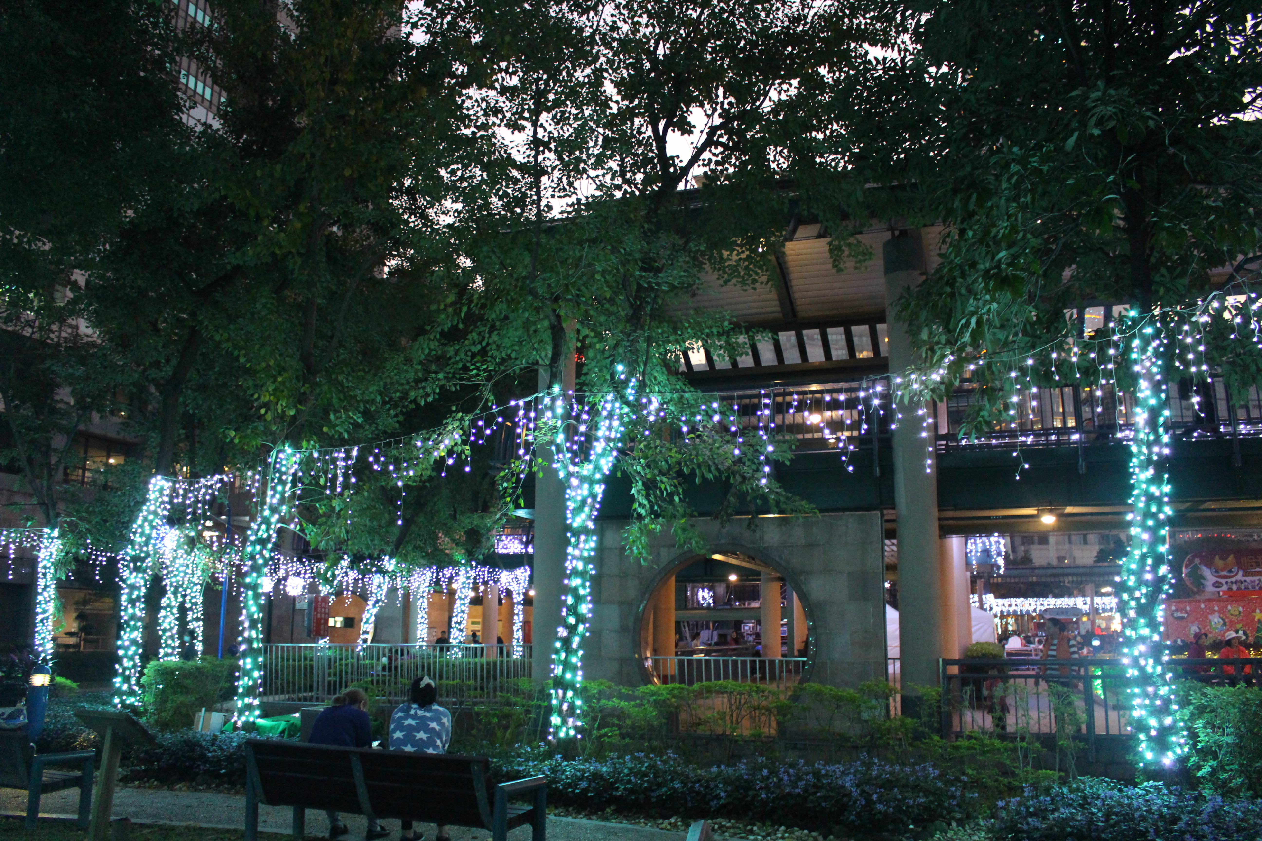 The Christmasland is decorated with lights.Photo/Hu, Fan(胡凡)