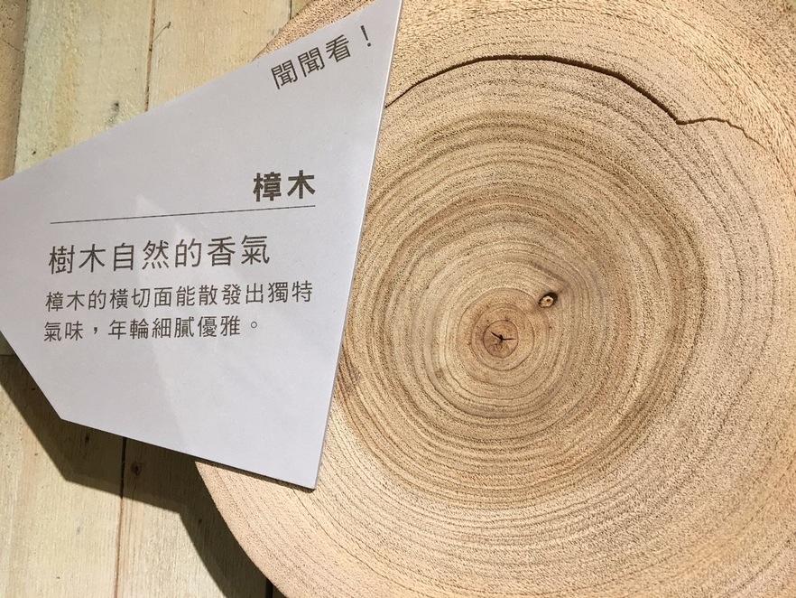 樟木是早期臺灣出口的重要貨品,因其獨特的香味可以驅蟲,且木質堅固耐用,所以至今依然飽受喜愛。(攝影/陳韋蓉)